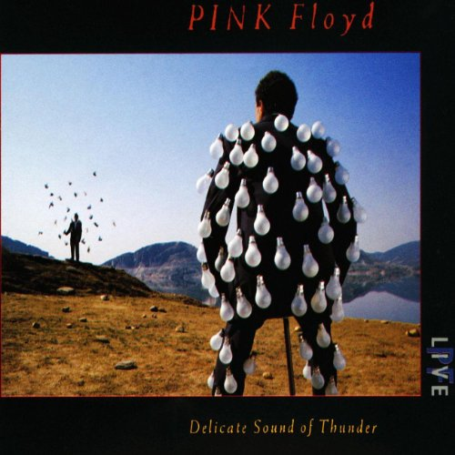 Original album cover of Delicate Sound Of Thunder by Pink Floyd