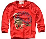 (シスキー) shisky 恐竜プリント トレーナー アメカジ 恐竜 ロゴ ダイナソー ミニ裏毛 キッズトレーナー 子供服 男の子 長袖 130cm 346-31【3-2】レッド
