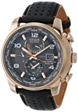 Citizen Men's AT9013-03H Stainless Steel Eco-Drive Watch