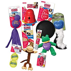 KONG Favorites Dog Toys and Treats Combo Pack (Colors Vary)