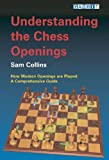 Understanding the Chess Openings