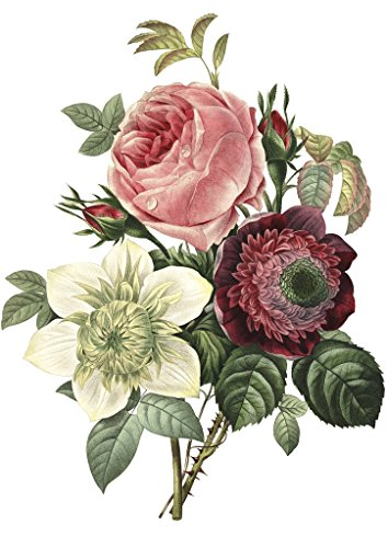 a5-flower-shabby-chic-vintage-decal-decorative-stickers-for-furniture-walls-and-other-flat-surfaces-