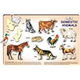 Creative's Play 'N' Learn - Domestic Animals, Multi Color