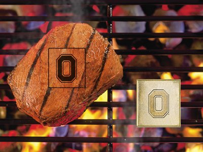 Fanmats Ncaa Ohio State University Buckeyes Metal-Alloy Fanbrand
