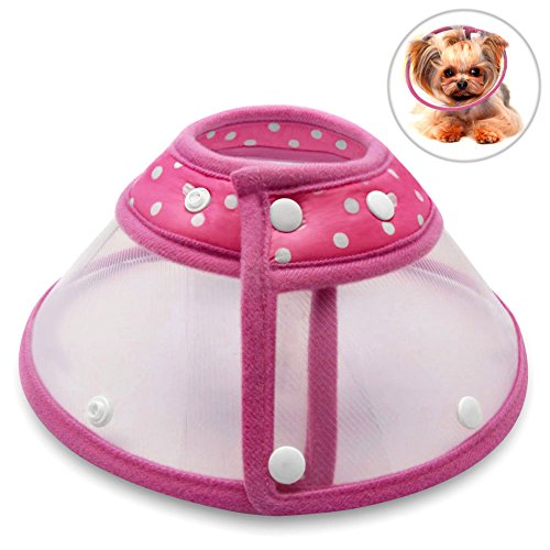 recovery-collar-cone-petbaba-clear-padded-elizabethan-collar-for-puppy-kitten-rose-s