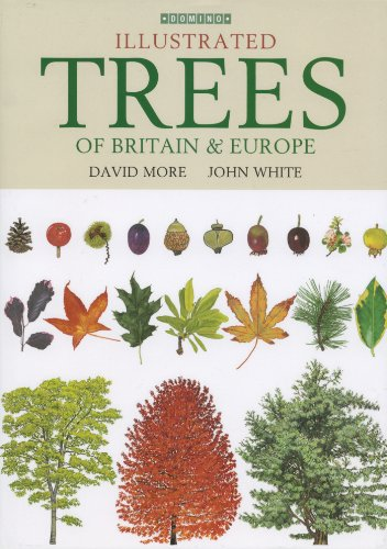 illustrated-trees-of-britain-and-northern-europe