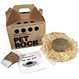 PET ROCK with walking leash (Kraft) Silly Gag Gift