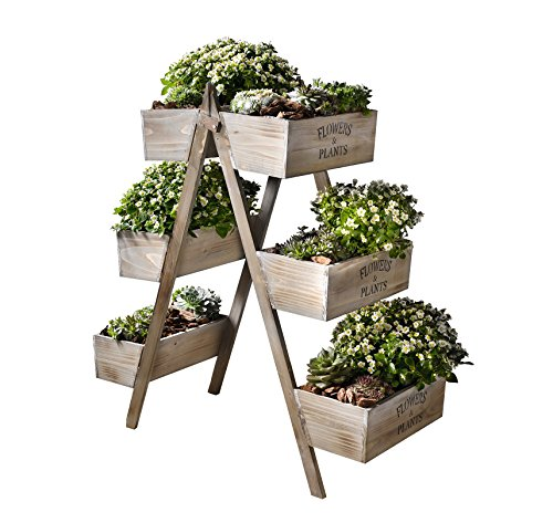 flowers-plants-foldable-wooden-plant-stand-w-six-seed-boxes-product-sku-gd221629