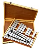 Ts-ideen 6044 Chromatic Glockenspiel 20 Metal Notes Bars in Wooden Case with 2 Mallets