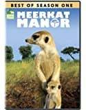 Best of Meerkat Manor - Season 1 [Import]