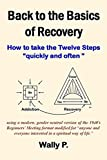 img - for Back to the Basics of Recovery book / textbook / text book
