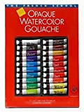 Sennelier The French School Opaque Watercolor Gouache Tube Sets set of 20 in case with brush