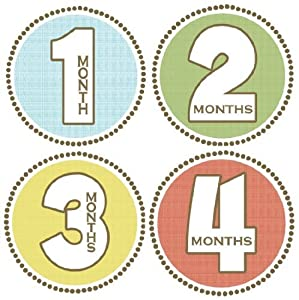 Seaside Monthly Baby Bodysuit Stickers