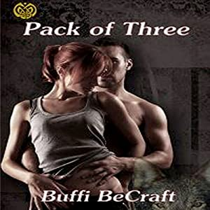Pack of 3 Audiobook