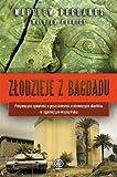 Zlodzieje z Bagdadu