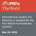 International Leaders Are Meeting in Istanbul for the First World Humanitarian Summit | Joshua Kelly