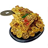 Starstell Fengshui Tri Leg Frog Or Money Frog Or Money Toad For Wealth Luck