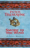Smoke in the Wind (Sister Fidelma)