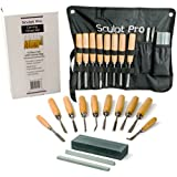 Wood Carving Chisel Set- 13 pc Professional Wood Carving Tools with Carrying Case