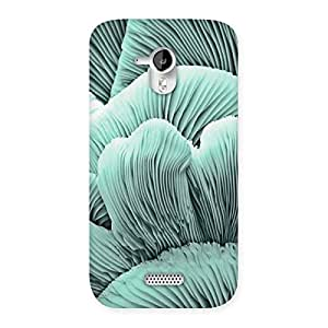 Stylish Shell of Ocean Back Case Cover for Micromax Canvas HD A116