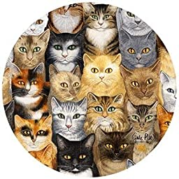 Thirstystone Cats Cats Cats Sandstone Coaster Set Of 4