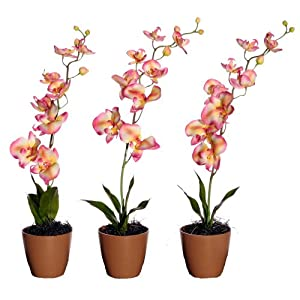 Vickerman AZF11046 Orchids in Wheat Bio Pot Artificial Plant, Pink/Yellow/White, 23-Inch at Sears.com