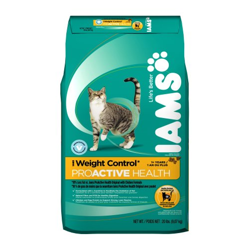 Best Dry Cat Food Vet Recommended And Low Price