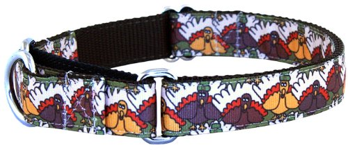 Thanksgiving Pilgrim Designer Martingale Dog Collar, Medium