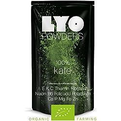 Poudre de Kale Bio
