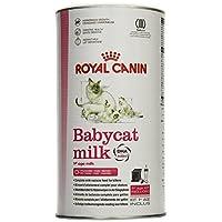 Royal Canin 55195 Babycat