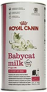 royal canin baby cat milk 300g animalerie. Black Bedroom Furniture Sets. Home Design Ideas