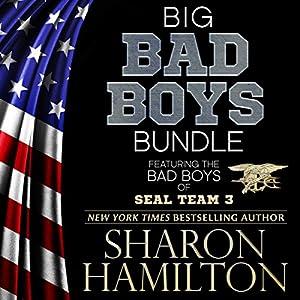 Big Bad Boys Bundle Audiobook
