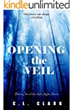 Opening the Veil (paranormal mystery suspense) (New Sight Series Book 1)