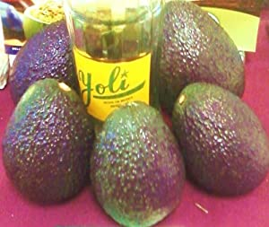 Big and Tall-- Jumbo California Avocados - Gift Box