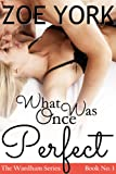 What Once Was Perfect: Wardham Book #1