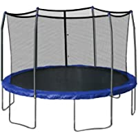 Skywalker 15' Round Trampoline and Enclosure (Blue)