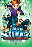 Elizabeth Singer Hunt Secret Agent Jack Stalwart: Book 11: the Theft of the Samurai Sword: Japan : (Secret Agent Jack Stalwart (Quality))