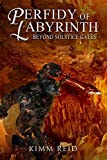 Perfidy of Labyrinth (Paperback)
