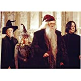 Harry Potter and the Chamber of Secrets Maggie Smith as Professor McGonagall Professor Dumbledore and Alan Rickman as Snape 8 x 10 inch photo