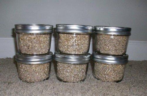 Brown Rice Flour&vermiculite Mushroom Substrate 12 Jars (1/4 Pint Jar) Mushroom Growing Kit (Vermiculite Jars compare prices)