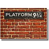 Platform 9-3/4 - NEW Hogwarts Express Harry Potter Humor Poster