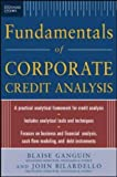 img - for Standard & Poor's Fundamentals of Corporate Credit Analysis by Ganguin, Blaise, Bilardello, John (2004) Hardcover book / textbook / text book