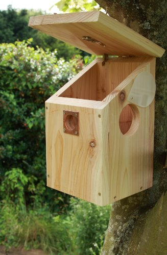 Bird Nest Box with Day/Night Vision Camera & Audio