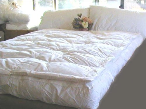 Easy Riser Pillowtop Air Bed With Remote Easy Riser