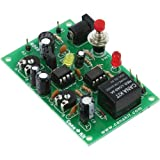 20 Minute Adjustable Delay (Dual) Timer with Relay, Assembled