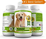 PROBIOTICS FOR DOGS - ON SALE! Get Probiotic Joint © The Best Dog Probiotic To Treat Your Dog, Now With 60 FREE Tablets for a Total of 120 Great-Tasting Chewable Bacon Flavored Tablets in One Bottle. Eliminates Diarrhea, Constipation, Upset Stomach, Gas, Stiffness, Plus Arthritis Pain Relief. Combines Live Lactobacillus Acidophilus and Natural Enzymes Like Fortiflora with Glucosamine, MSM, and Chondroitin for Maximum Digestive Health and Joint Mobility. Manufactured in Our USA-Based GMP and Organic Certified Facility. Third Party Tested for Purity So Its Safe and Effective for Dogs. GUARANTEED!