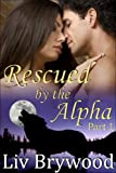 Rescued by the Alpha: Part 1, BBW Werewolf Romance (Silver Creek Pack)