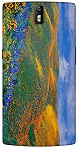 Timpax protective Armor Hard Bumper Back Case Cover. Multicolor printed on 3 Dimensional case with latest & finest graphic design art. Compatible with One Plus One ( 1+1 ) Design No : TDZ-25672