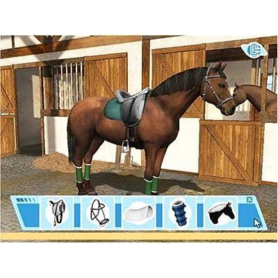 Hvor kan man spille på heste