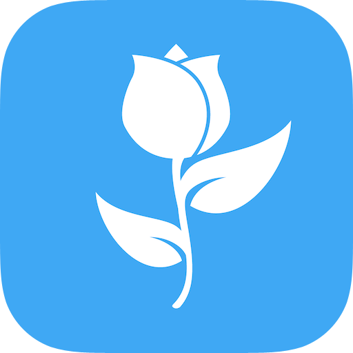 Flowers – Fast Delivery
